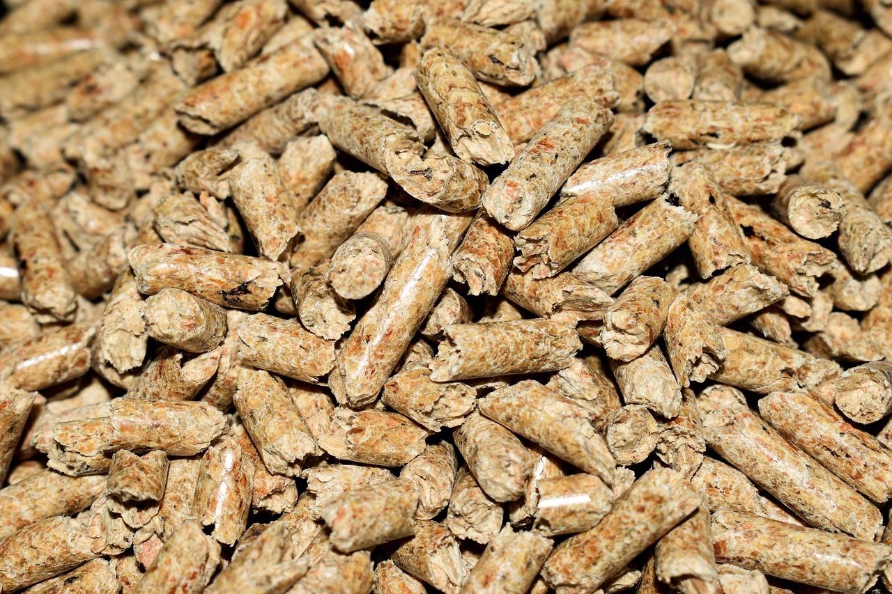 aumento de la biomasa