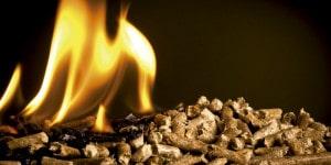 biomasa_cuidado_medioambiental_greenheiss