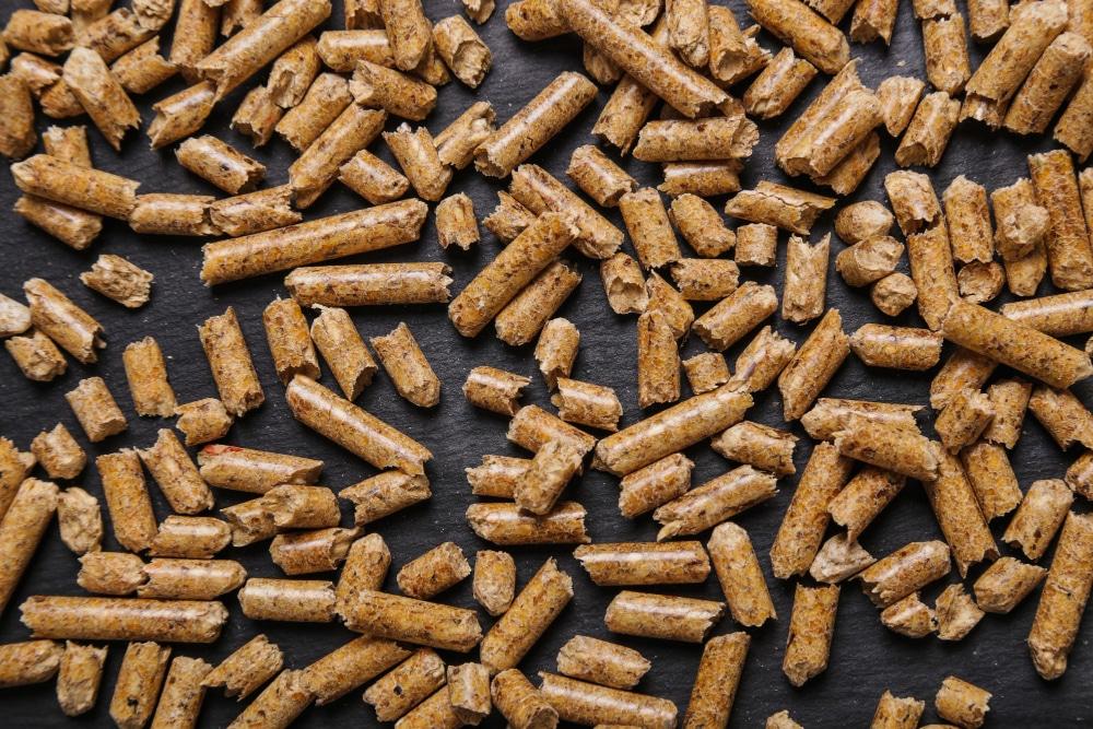 emisiones de biomasa