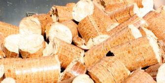 informe_biomasa