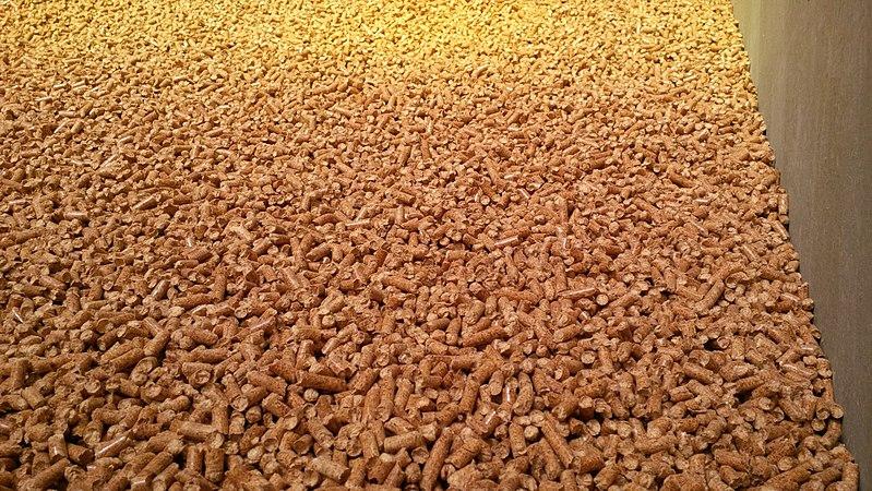Fábricas de pellets; un elemento esencial para el desarrollo de la biomasa