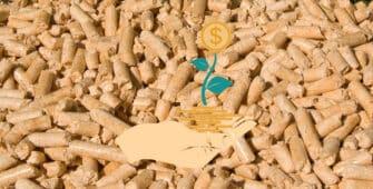 precios combustibles biomasa