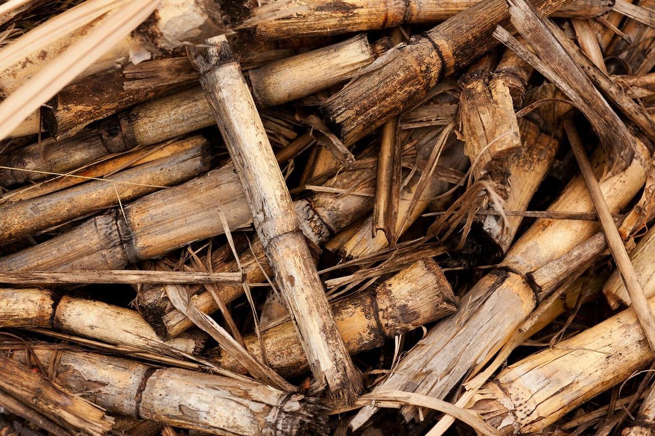 rendimiento caldera biomasa
