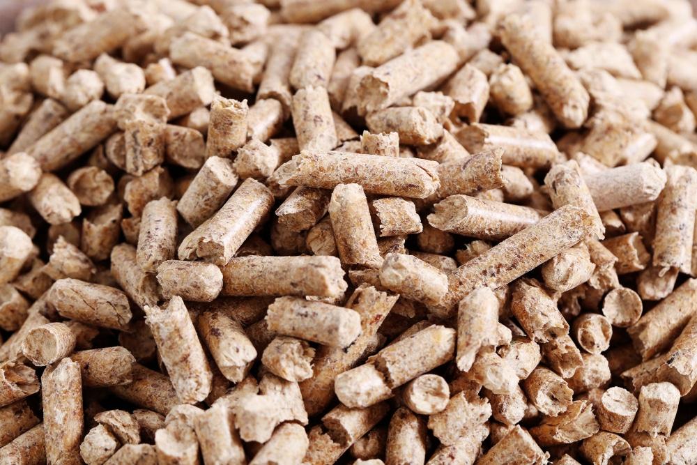 transformación de biomasa